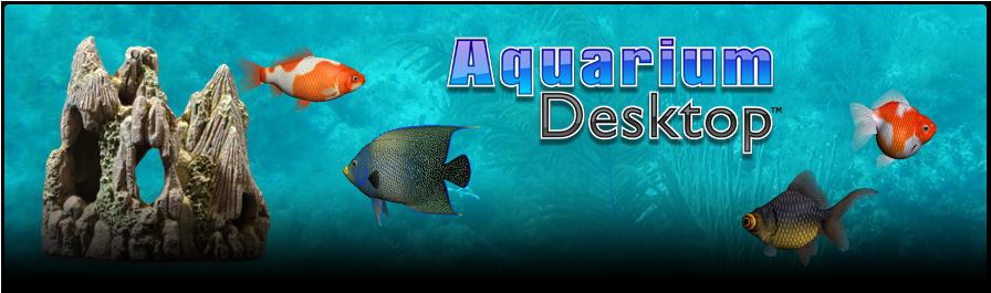 مكتب لحوض أسماك تسبح -برنامج